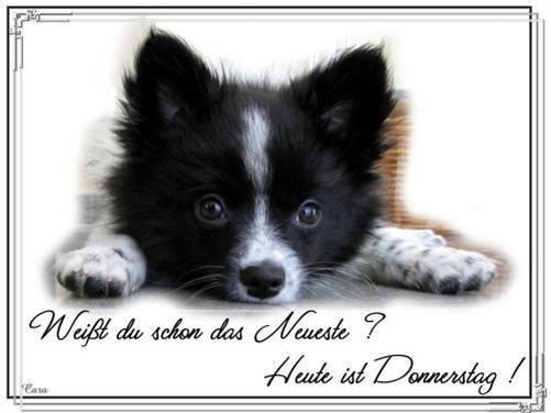 An den Beitrag angehängtes Bild: http://img17.dreamies.de/img/685/b/jngjhyte50a.jpg